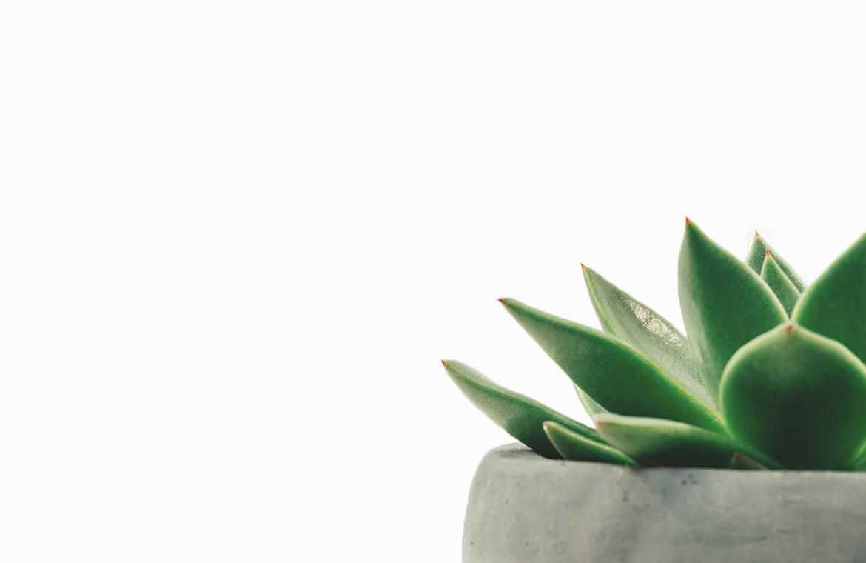 Las tres claves decorativas del minimalismo.