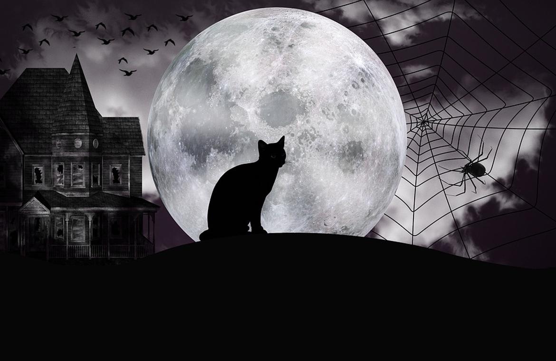 Prepara tu casa para Halloween con las mejores ideas.